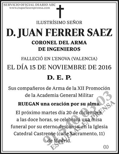Juan Ferrer Saez